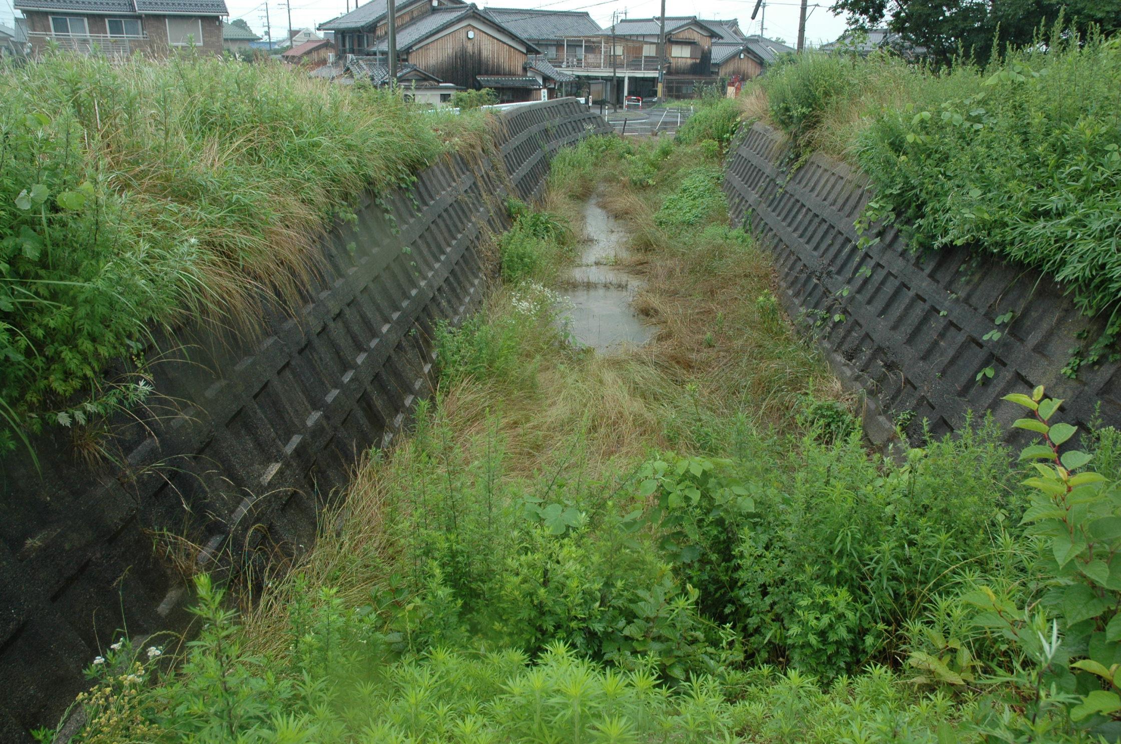 廃川を訪ねて 葉山川: 水辺の憩