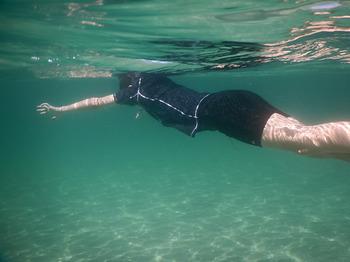 DSCN0063 沖へ泳ぐ.jpg