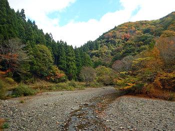 DSCN0072-犬上川上流の河原.jpg