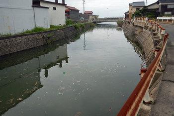 DSCN3420 満水の川.jpg