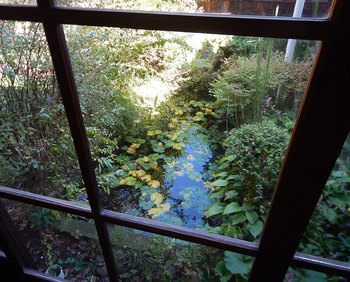 DSCN3982 窓辺の池.jpg