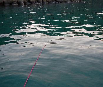 DSCN4077 釣り糸を垂らす.jpg