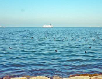 DSCN4265-琵琶湖.jpg