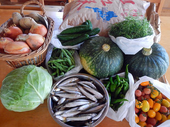 DSCN6340 米・野菜・魚.jpg