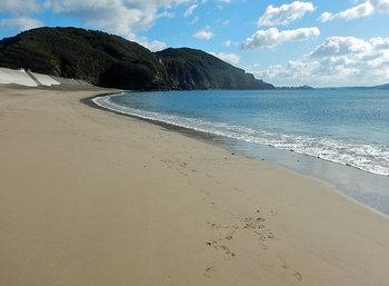 DSCN9957 海浜.jpg
