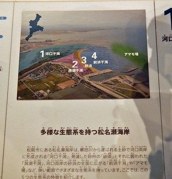 DSCN9993 松名瀬の説明.jpg