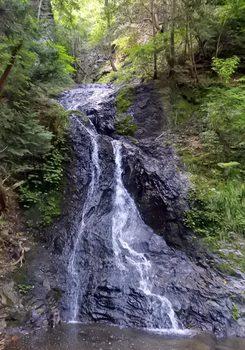 DSC_5581滝-.jpg