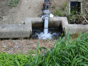DSC_6969 農業用水.jpg