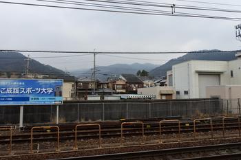 DSC_8849.JPG