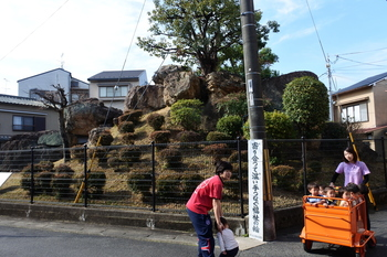 DSC_9013.JPG
