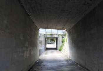 DSC_9155 滝への入り口.jpg