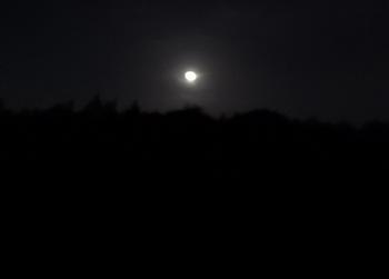 DSC_9294 月夜.jpg