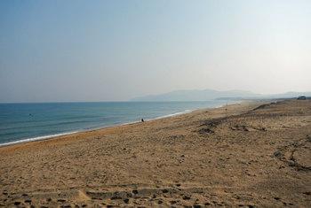 テトラがない浜.jpg
