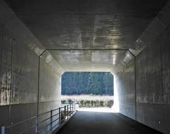 トンネルの向こうの梅園.jpg