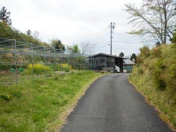 三重県への道.jpg