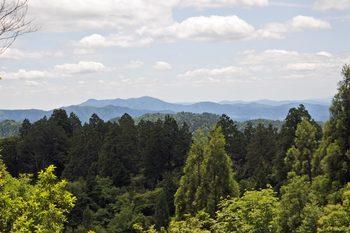 丹波高地を一望.jpg