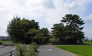 加賀野神社.jpg