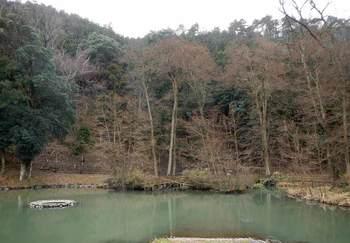 山のふもとの沼.jpg