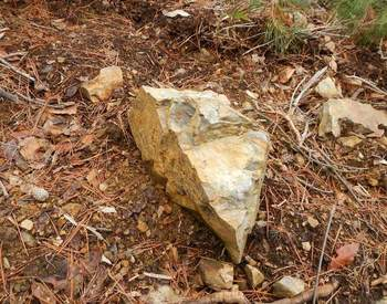 山の石.jpg