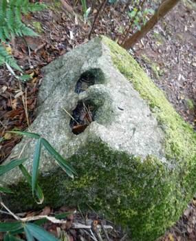 山中の石.jpg