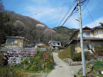 山沿いの集落DSCN7596.jpg