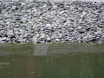 州浜の汀線.jpg