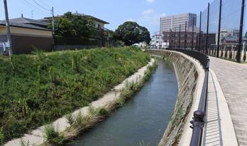 市内の川.jpg