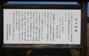 恋の松原説明.jpg