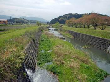 杣川.jpg