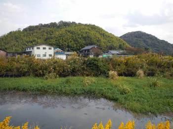 水辺と岡山.jpg