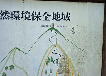 登山道DSC_8125.jpg