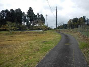 県境への道.jpg
