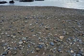 石が転がる浜.jpg