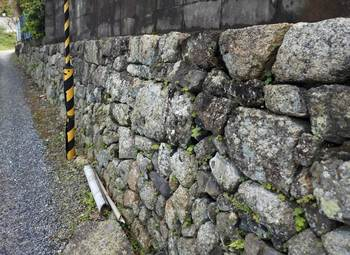 自然石石垣.jpg